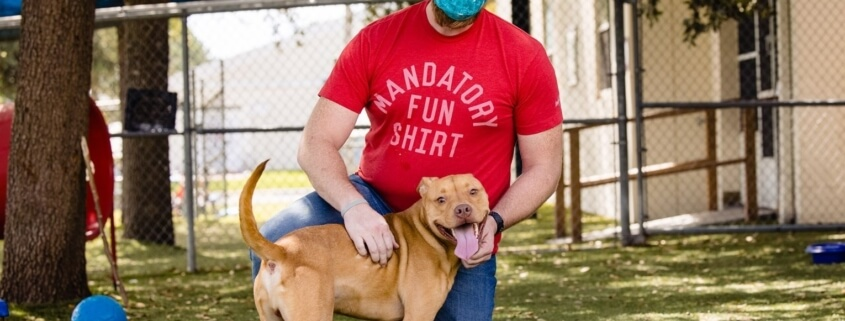 Shelter celebrates dog's adoption