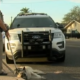 Frightened dog tazed after freeway run