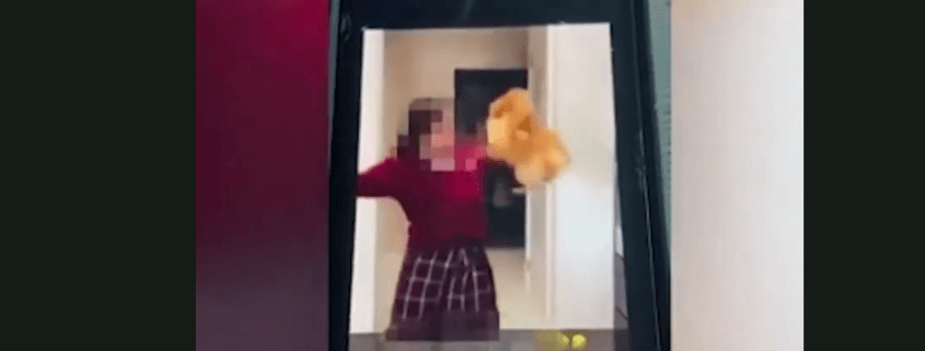 Teen caught on video abusing small dog
