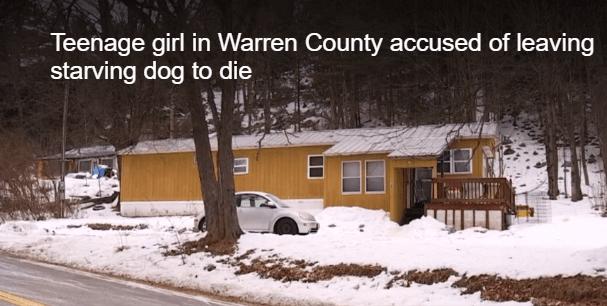 Teen arrested for starved dog