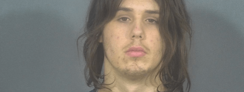 Teen accused of killing puppy in dryer