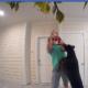 Man caught on video abusing dog
