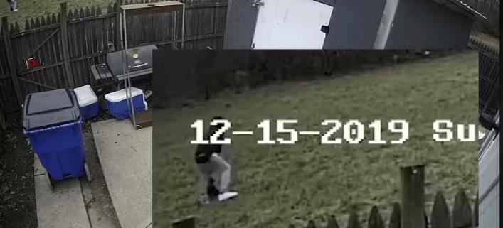 Authorities seeking man abusing dog on video