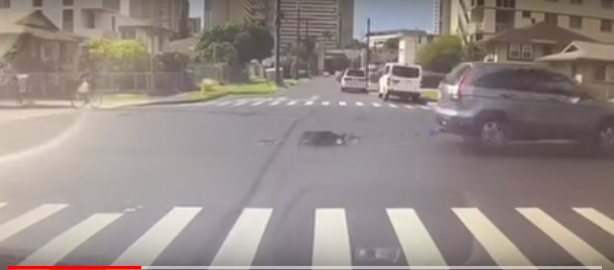 Video shows dog being dragged behind car