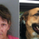 Woman arrested for stealing homeless man's dog