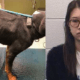woman arrested for gross negligence of starved dog