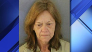 Woman accused of beating injured dog to death with a crowbar