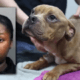 Woman facing cruelty charge after dog found caged in dumpster