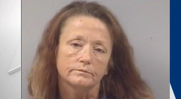 Woman dragged puppy to death