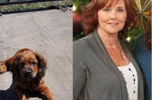 Woman accused of selling rescue puppy to fund a vacation